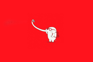 Elephant On Red Backgrpund Background for Android, iPhone and iPad