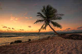 Mexican Beach - Obrázkek zdarma pro Samsung Galaxy Nexus