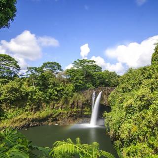 Waimoku Hawaii Waterfall - Obrázkek zdarma pro 1024x1024