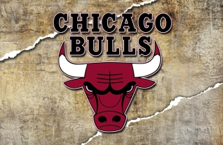 Chicago Bulls Background for Android, iPhone and iPad