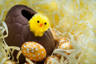 Free Easter Egg Picture for Android, iPhone and iPad