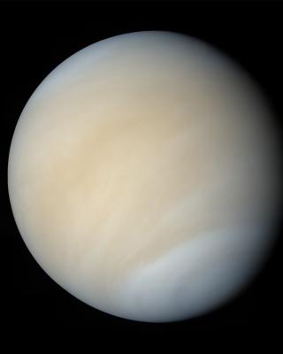 Venus - Obrázkek zdarma pro 240x432