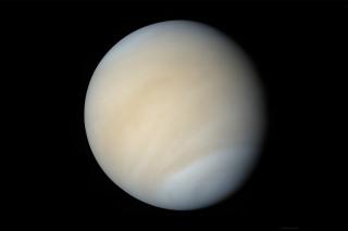 Venus - Obrázkek zdarma pro 1024x768