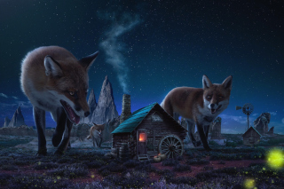 Fox Demons - Obrázkek zdarma pro Samsung Galaxy Tab 10.1