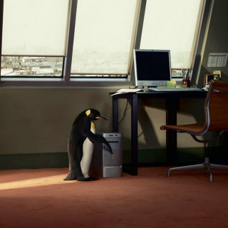 Penguin and Computer - Obrázkek zdarma pro iPad