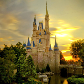 Disneyland Castle - Obrázkek zdarma pro 208x208