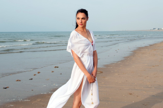 Gal Gadot Actress - Obrázkek zdarma pro 1366x768