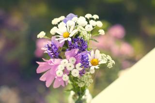 Bouquet of wildflowers - Obrázkek zdarma pro Nokia XL