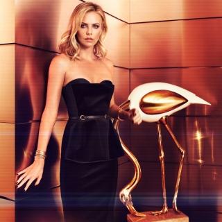 Charlize Theron on Oscar Awards - Obrázkek zdarma pro iPad mini 2