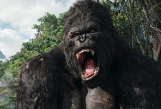 King Kong - Obrázkek zdarma pro Nokia XL