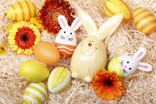 Easter Eggs Decoration with Hare - Fondos de pantalla gratis para Sony Ericsson XPERIA X8