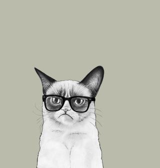 Grumpy Cat - Obrázkek zdarma pro iPad 2