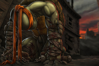 TMBT, Michelangelo Teenage Mutant Ninja Turtles Picture for Android, iPhone and iPad
