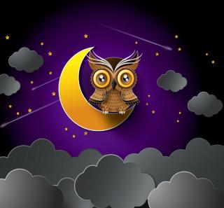 Owl - Obrázkek zdarma pro iPad 2