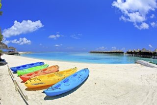 Free Colorful Boats At Maldives Beach Picture for Android, iPhone and iPad