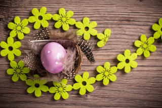 Purple Egg, Feathers And Green Flowers - Obrázkek zdarma