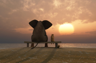 Elephant And Dog Looking At Sunset - Obrázkek zdarma pro Fullscreen Desktop 1024x768