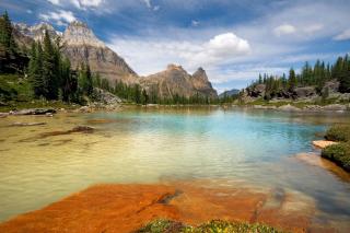 Banff & Jasper National Parks, Canada - Obrázkek zdarma pro HTC Desire 310