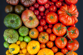 Tomatoes Wallpaper for Android, iPhone and iPad