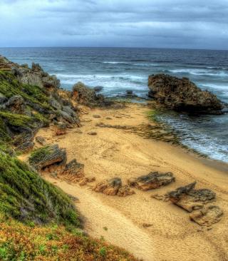 Madeira Sea Shore - Obrázkek zdarma pro Nokia Asha 308