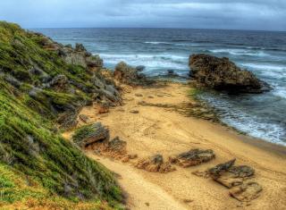 Madeira Sea Shore - Obrázkek zdarma pro Motorola DROID