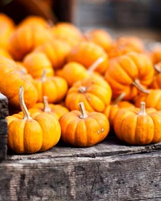 Cute Small Pumpkins - Obrázkek zdarma pro Nokia Lumia 2520