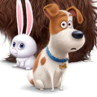 The Secret Life of Pets Movie 2016 - Obrázkek zdarma pro iPad Air