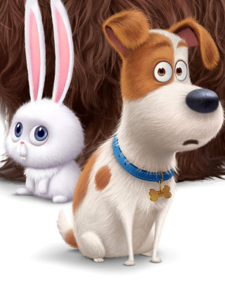The Secret Life of Pets Movie 2016 - Obrázkek zdarma pro Nokia Asha 306