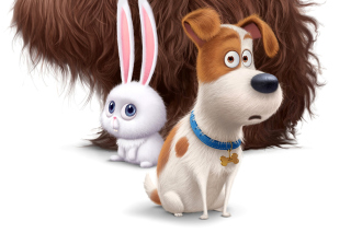 The Secret Life of Pets Movie 2016 - Obrázkek zdarma pro Fullscreen Desktop 1400x1050