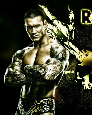 Randy Orton Wrestler - Obrázkek zdarma pro 320x480