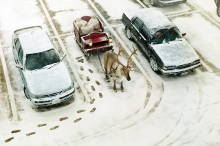 Christmas Parking Wallpaper for Android, iPhone and iPad