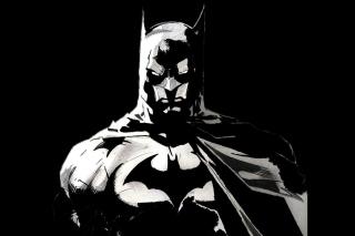 Batman Artwork - Fondos de pantalla gratis para Nokia Asha 201