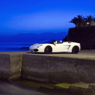 Lamborghini Gallardo LP560 - Obrázkek zdarma pro 1024x1024