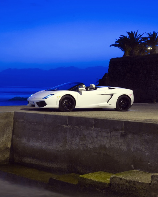 Lamborghini Gallardo LP560 - Obrázkek zdarma pro 1080x1920