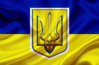 Flag and Coat of arms Of Ukraine - Obrázkek zdarma pro Samsung Galaxy Ace 4