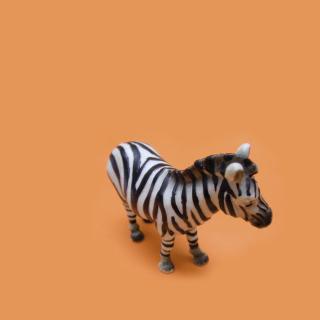 Zebra Toy - Obrázkek zdarma pro iPad Air