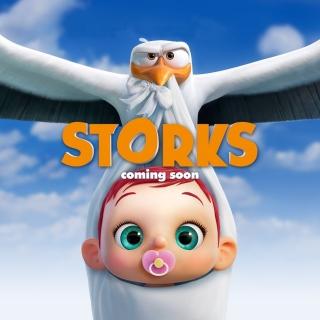 Storks HD - Obrázkek zdarma pro 1024x1024