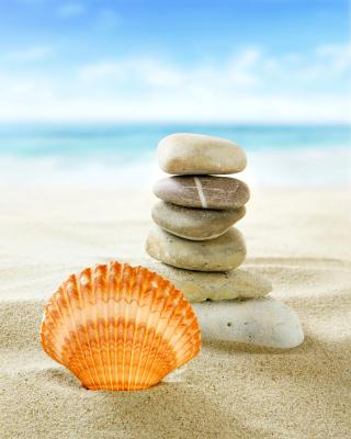 Sea Shells Beach - Obrázkek zdarma pro 240x432