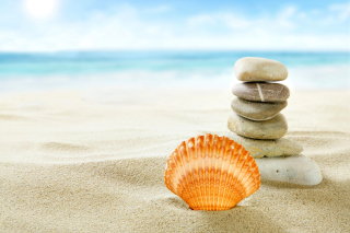 Sea Shells Beach Background for Android, iPhone and iPad