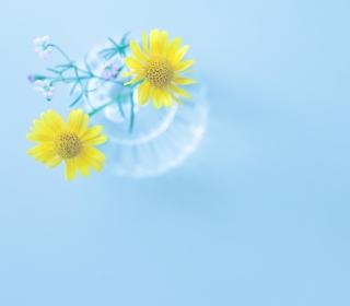 Yellow Daisies In Vase - Obrázkek zdarma pro 1024x1024