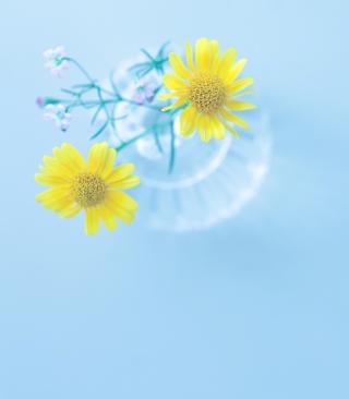 Yellow Daisies In Vase - Obrázkek zdarma pro 240x320