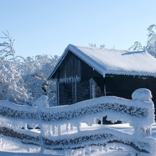 Snowy Wintertime - Obrázkek zdarma pro iPad Air