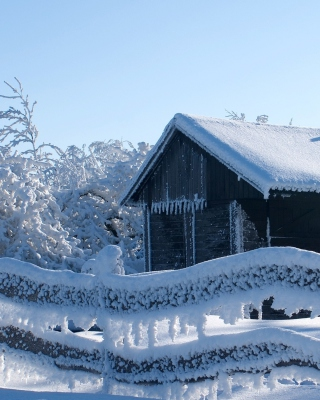 Snowy Wintertime - Obrázkek zdarma pro Nokia Lumia 710