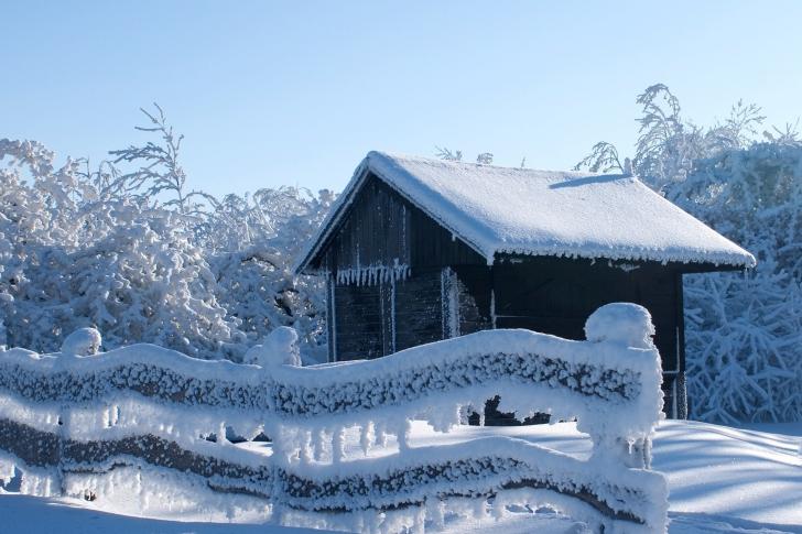 Snowy Wintertime wallpaper