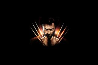 Wolverine - Obrázkek zdarma pro Desktop 1280x720 HDTV