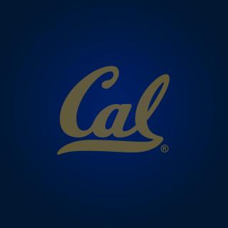 California Golden Bears - Obrázkek zdarma pro 1024x1024