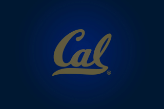 California Golden Bears - Obrázkek zdarma pro Samsung Galaxy Tab 2 10.1