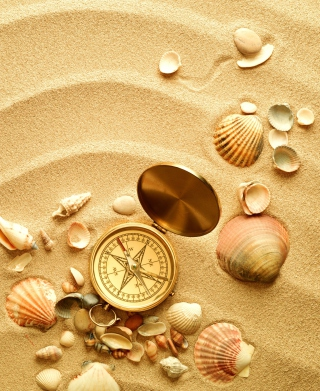 Compass And Shells On Sand - Obrázkek zdarma pro iPhone 6
