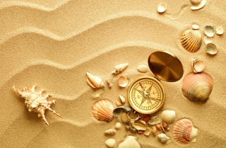 Compass And Shells On Sand - Obrázkek zdarma