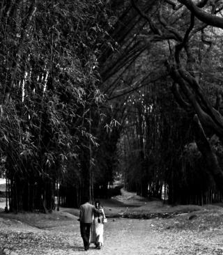 Romantic Walk - Obrázkek zdarma pro iPhone 4S